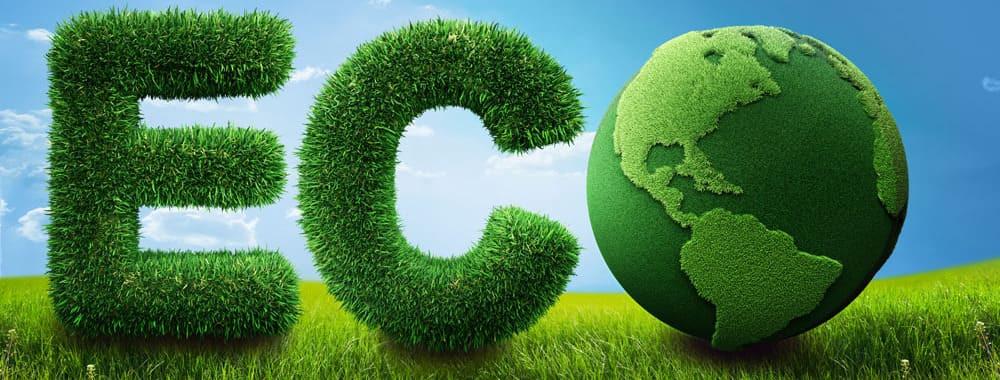 Выбираем специальность в Словакии - Экологя