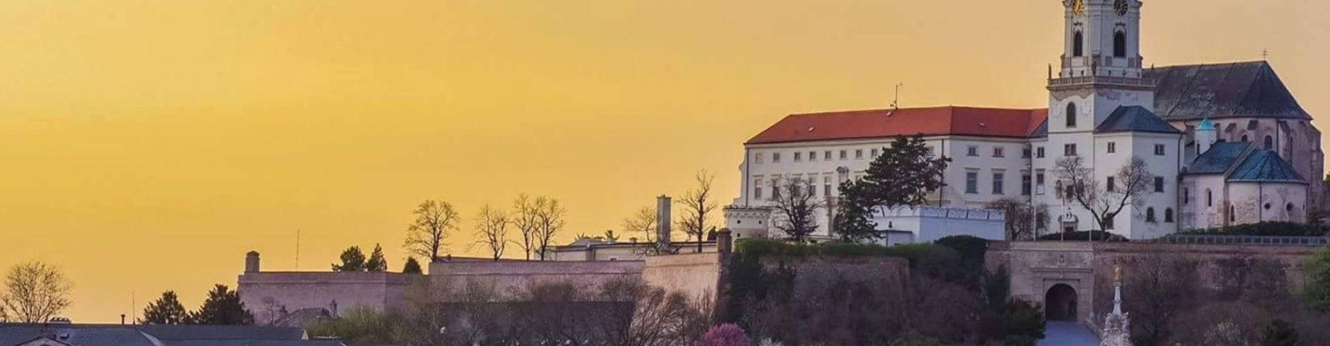 Словацький агротехнічний (сільськогосподарський) університет у Нітрі